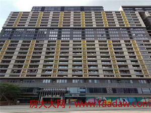 深圳布吉10栋高品质精装公寓【甘坑·中海公馆】最具投资的小产权房出售,69万/套起